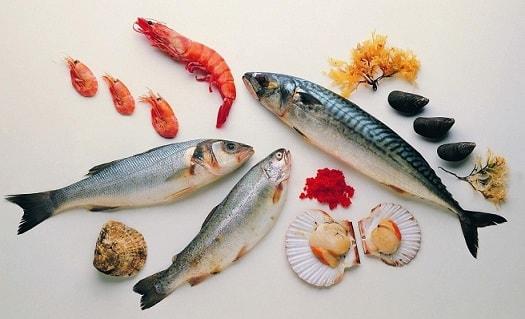Бизнес-идея: Рыбный магазин
